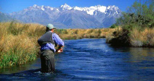 Moving a uk pension to nz learn how to reduce your tax bill for New zealand fly fishing